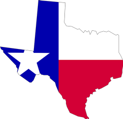 register a business in texas with a delaware llc